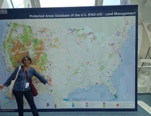 Reflections on the 2017 Esri UC