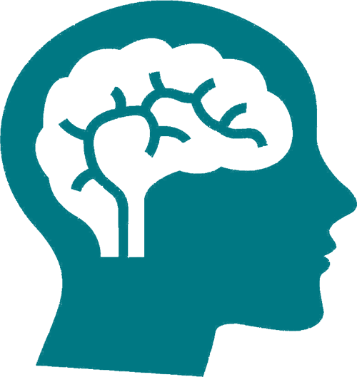 Spatial IQ brain icon